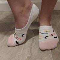 WORN sushi socks