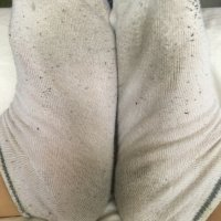 Dirty smelly socks